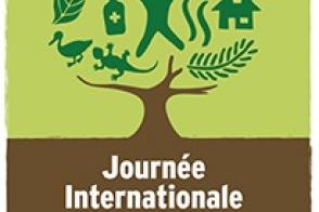 Célébration de la journée internationale de la Forêt