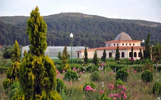 Parc National de Tlemcen